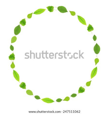 Green leaves shaped as frame with space for your text - stock photo