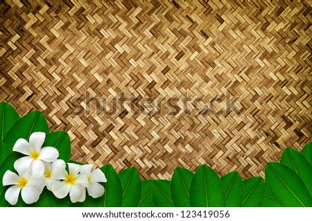 Green leaves with plumeria flowers on bamboo texture - stock photo