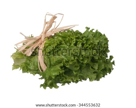 Green lettuce bouquet laying on side isolated on white background