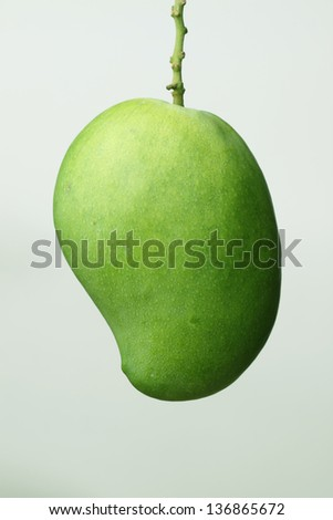 green mango - stock photo