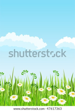 Green meadow and blue sky - stock photo