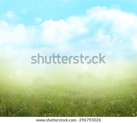 Green meadow and blue sky spring background  - stock photo