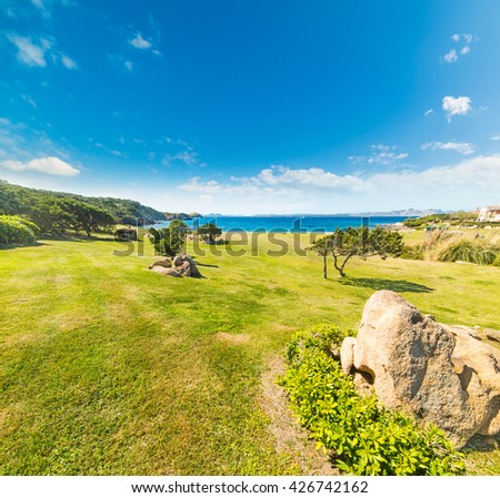 green meadow in Cala del Faro, Sardinia - stock photo