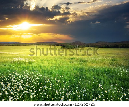 Green meadow in mountain. Composition of nature. - stock photo