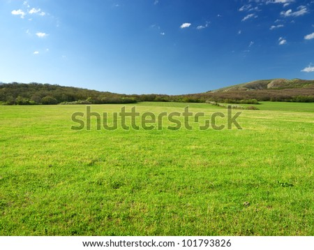 Green meadow in mountain valley. Spring composition - stock photo