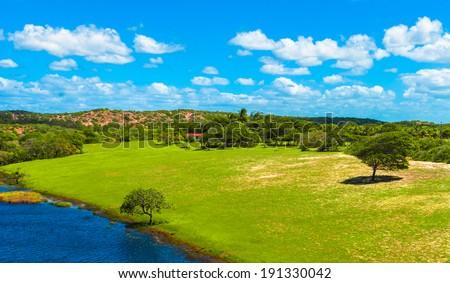 Green meadow of the Genipabu lagoon in Natal, Brazil - stock photo