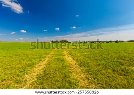 green meadow under blue sky at sunny weather - stock photo