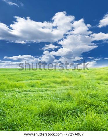 green meadow under nice sky - stock photo