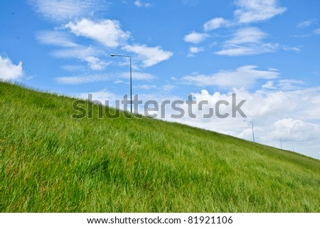 Green meadow with blue sky with fluffy clouds