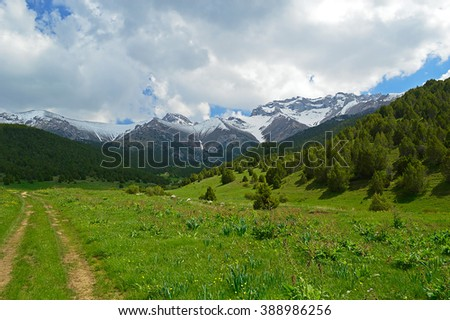 Green meadow with snowy mountains on background, Sheveli gorge, Kyrgyzstan