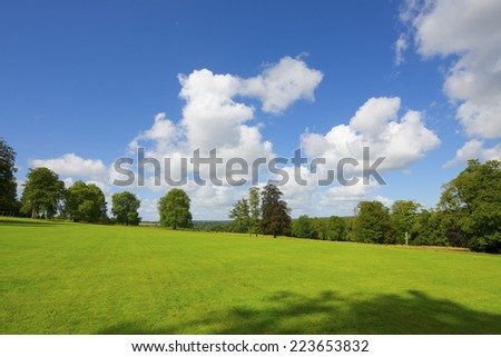 Green meadow with trees in Normandy, France. - stock photo