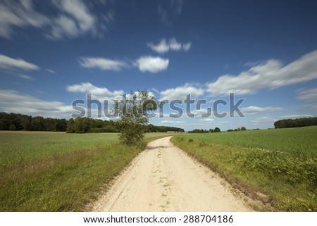 Green meadows against blue sky and white clouds - stock photo