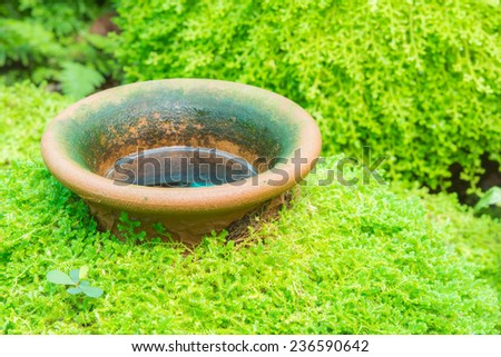 Green moss covered jar in nature park - stock photo