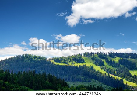 Green mountain and blue sky over trees. Summer landscape