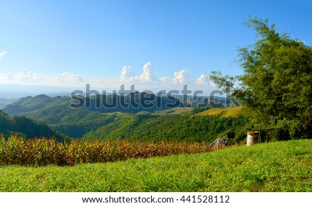 Green mountain landscape with blue sky background - stock photo