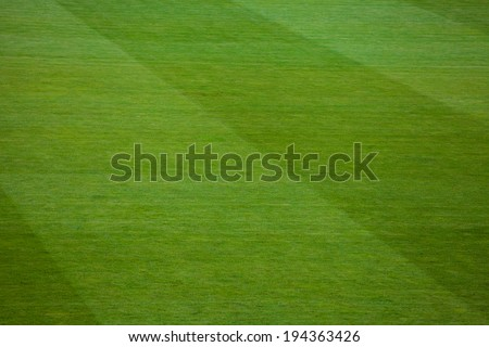 green natural grass of a Football soccer field - stock photo
