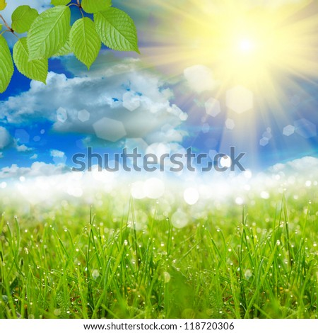 green nature background with sky - stock photo