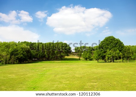 Green nature, landscape - stock photo