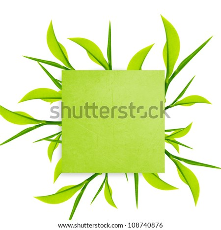 Green Note paper with paper clip  and green leaves on white background.