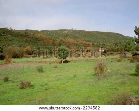 green of the mountain - stock photo