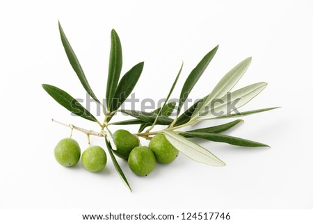 Green olives and olive branches on a white background - stock photo