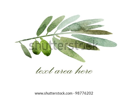 Green olives branch with a field for the text - stock photo