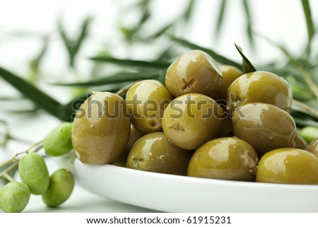 green Olives on branch with leaves Background - stock photo
