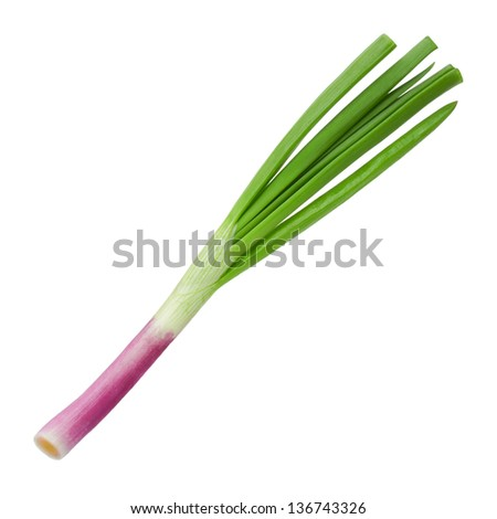 green onion on a white background - stock photo