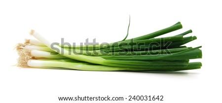 Green Onion on white background  - stock photo