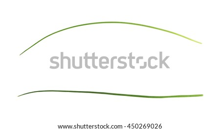 Green onion scallions isolated over the white background, set of two different foreshortenings