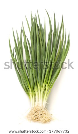 green onions on white  - stock photo