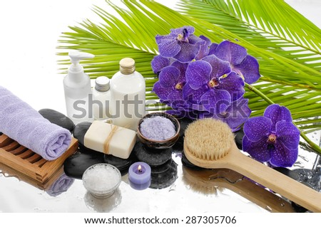 green palm and spa set on wet background