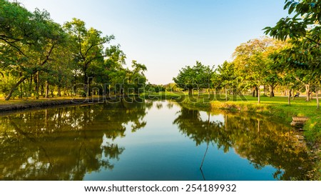 Green park with lake sunset time, Swamp in park - stock photo