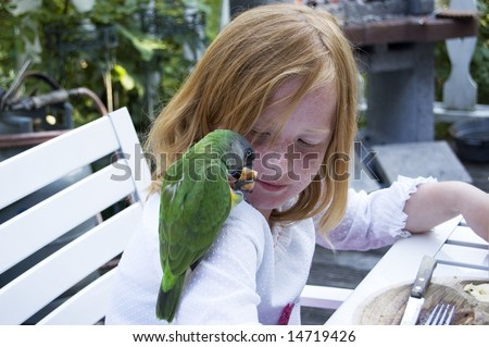 green parrot is eating a piece of bread on shoulder of girl