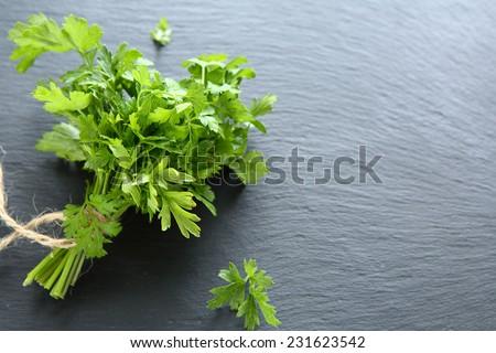 Green parsley on dark slate, background - stock photo