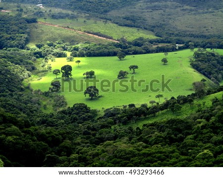 green pasture view from the top with isolated trees