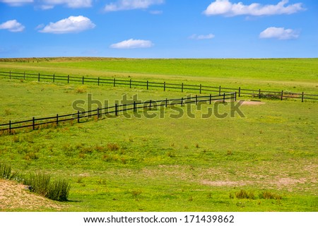 Green pasture with blue sky - stock photo