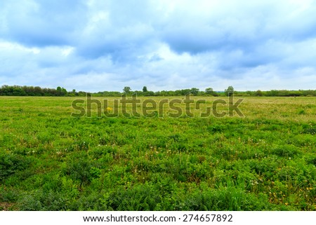 Green Pastures in springtime in Hungary - stock photo