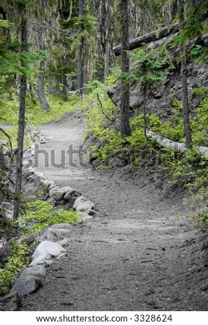 green pathway - stock photo