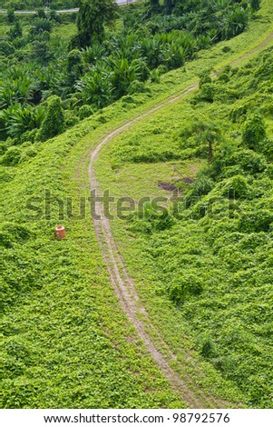 Green pathway beside the hill - stock photo