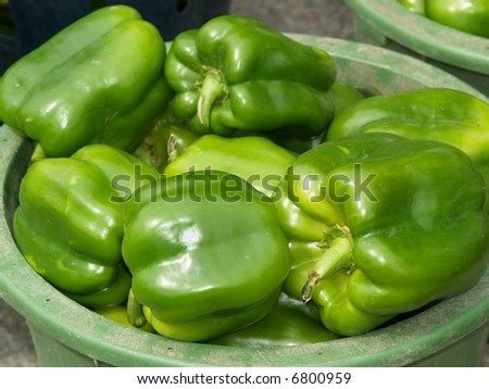 green pepper - stock photo