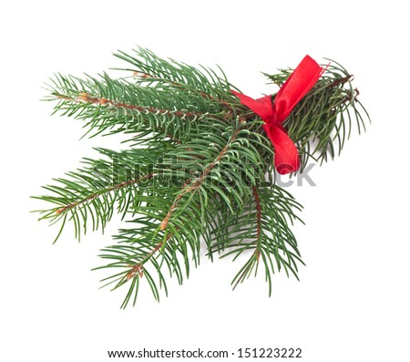 green pine branch with red bow on a white background - stock photo