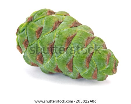 Green pine cone on a white background     - stock photo