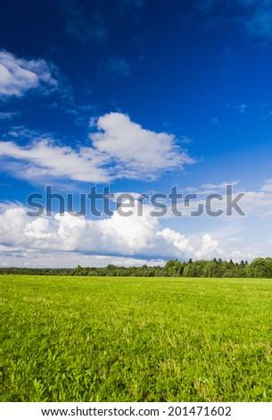 Green Plain Grass Land  - stock photo