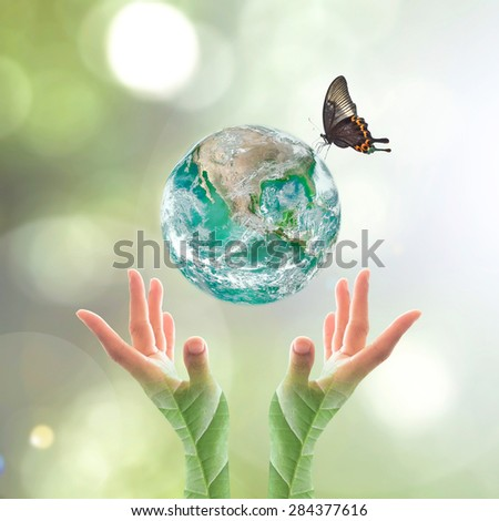 Green planet with butterfly over human hands in blurred green color bokeh background natural tree leaves facing sun flare : World environment day concept CSR: Elements of this image furnished by NASA  - stock photo