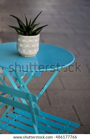 Green plant and furniture on a patio