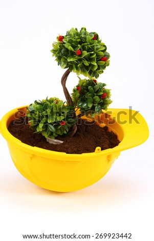 Green plant in yellow  helmet on white - environmental friendly industry concept - stock photo