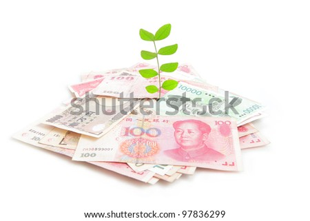 Green plant leaf growing on money (Asian money include china, japan, korea, taiwan) isolated on white background - stock photo