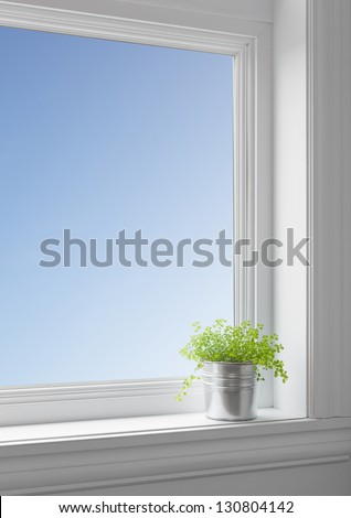 Green plant on a windowsill, with blue sky seen through the big clean window. - stock photo