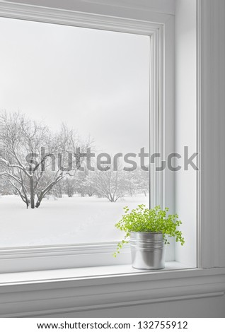 Green plant on a windowsill, with winter landscape seen through the window. - stock photo